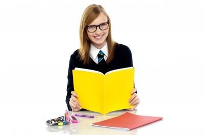 Beginner (Studying)